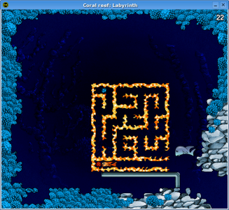 Coral reef: Labyrinth